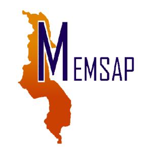 MEMSAP